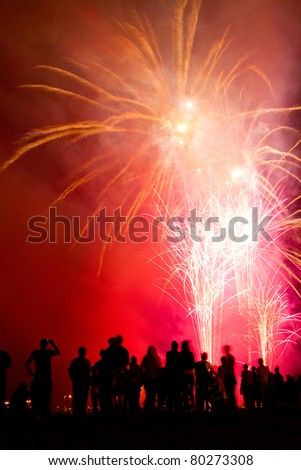 People watching beautiful fireworks - stock photo