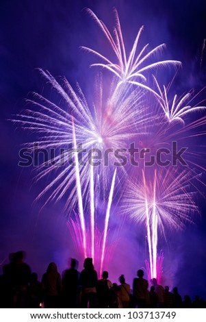 People watching beautiful pink fireworks - stock photo