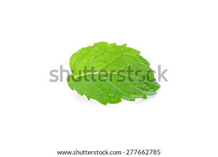 Peper mint isolated on the white background.