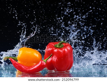 Pepper in spray of water. Juicy pepper with splash on black background - stock photo