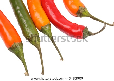 Pepper  on a withe isolated background with copy space (with clipping path)