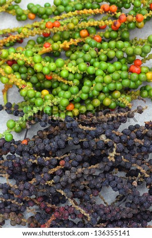 Peppercorns - piper nigrum - stock photo