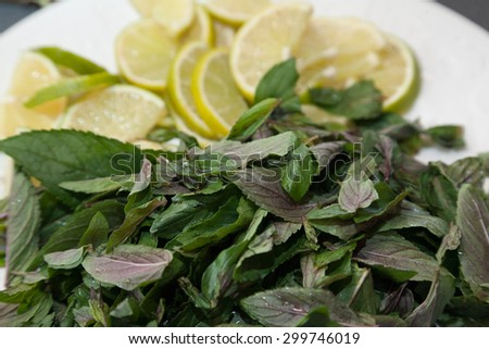 Peppermint and out of focus lemons  - stock photo