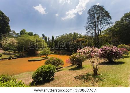 Peradeniya botanical garden in Kandy, Sri Lanka, Ceylon - stock photo