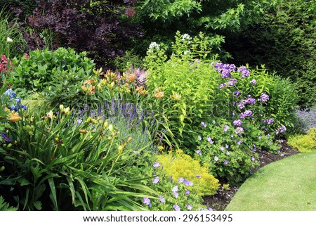 Perennial flower bed in summer.  - stock photo