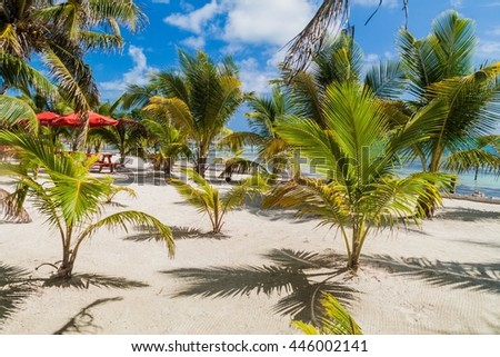 Perfect beach at Caye Caulker island in Belize