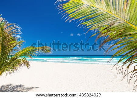 Perfect beach with coconut palm tree leafs, white sand and turquoise sea water on caribbean coastline - stock photo