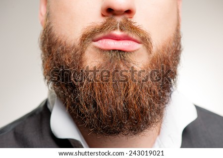 Perfect beard. Close-up of young bearded man standing against white background - stock photo