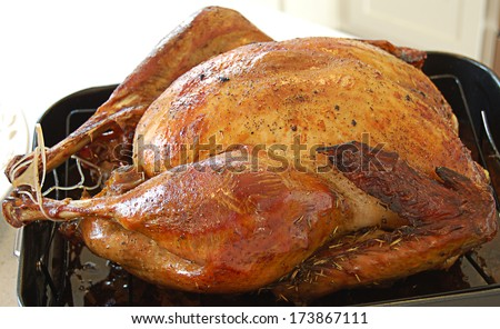 Perfect cooked turkey close up - stock photo