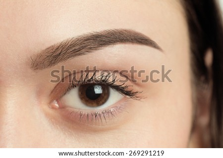 Perfect Eyebrow After Correction. Close-up macro photo of big opened eye, care and review of the eyes, light brown coloring, natural, perfect shape, procedure, nude make-up. Care, thin out, pull out. - stock photo