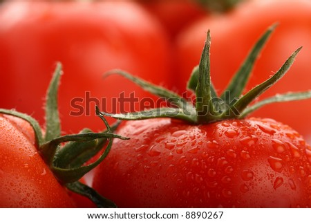 perfect fresh red wet tomatoes with tomato on background,  very soft focus, super macro shot. - stock photo