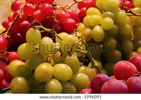 Perfect grapes - stock photo