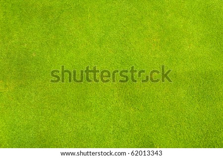 Perfect green grass texture from golf field - stock photo