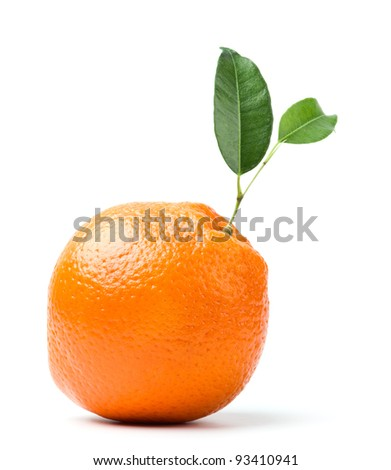 perfect orange with leaf isolated on white background