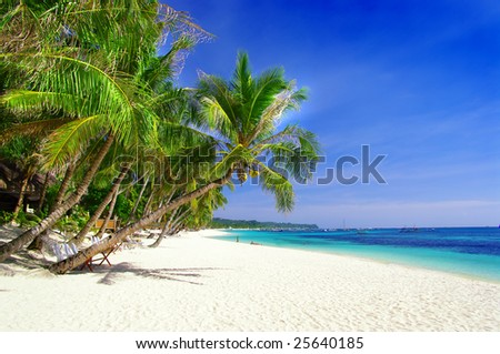 perfect tropical beach - stock photo
