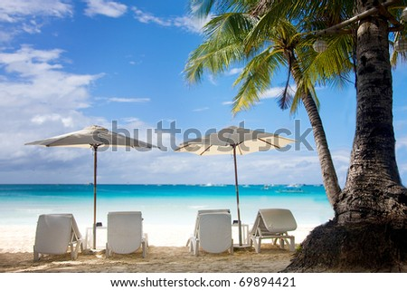 perfect tropical beach and palm tree