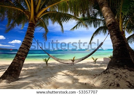 Perfect tropical beach with palm trees and hammock - stock photo