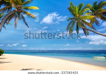 Perfect tropical beach with palms and sand - stock photo