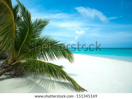 Perfect tropical island paradise beach - stock photo