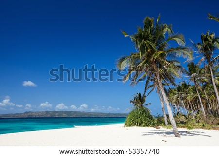 Perfect tropical white sand beach with palm trees - stock photo
