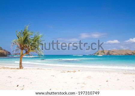 Perfect white sand beach. - stock photo