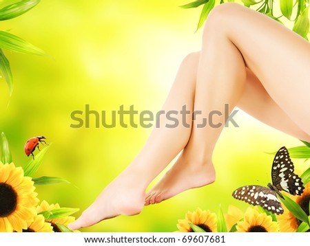 Perfect woman's legs - stock photo