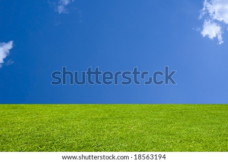 Perfect XL Grass and Sky Background - stock photo