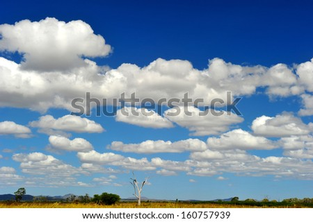 perfectly clear blue sky with puffy white clouds lay over remote barren australian outback, north queensland, australia - stock photo