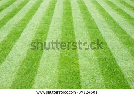 Perfectly striped freshly mowed garden lawn in summer - stock photo