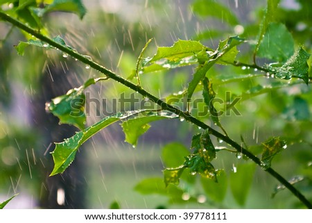 Perfectly Sunny Sun Shower Storm - stock photo