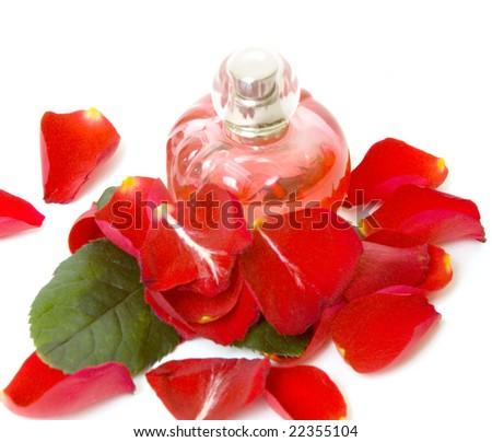 Perfume and petal rose - stock photo