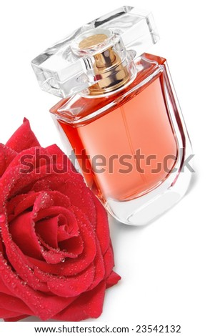 Perfume bottle and red rose - stock photo