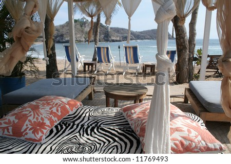 pergola and chairs on beach under palm tree in mexico - stock photo