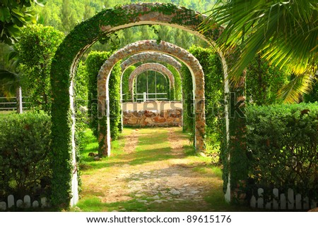 Pergola and plant in a garden ,at western Thailand - stock photo