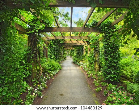 Pergola Stock Photos Royalty Free Images Amp Vectors