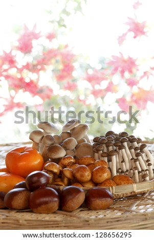 persimmon and autumn
