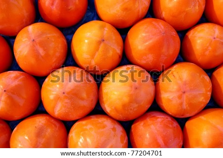 persimmon fruits pattern in rows arrangement fruit background - stock photo