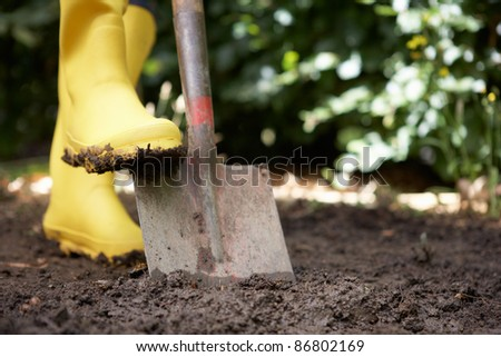 Person digging in garden - stock photo