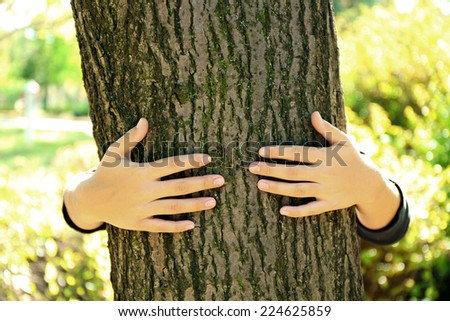Person hugs trunk large tree, close-up - stock photo
