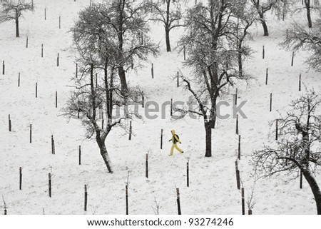 Person is walking in snow in park, Prague. - stock photo