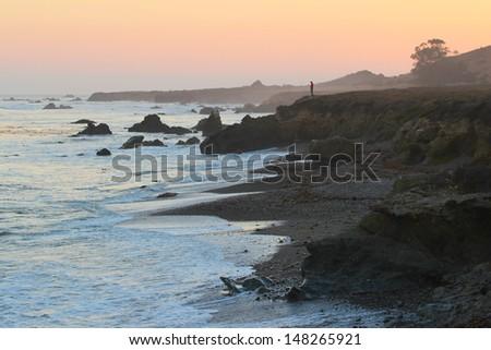 Person overlook Pacific Ocean, Highway 1, Big Sur, California, USA - stock photo