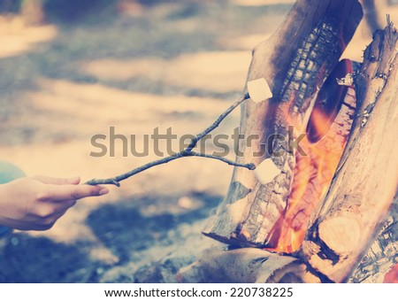 Person roasting marshmallows on a stick over a campfire while camping with Instagram style filter - stock photo