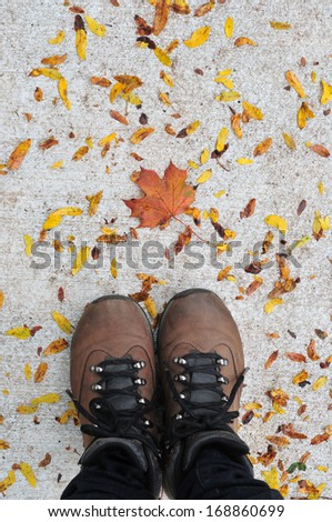 Person's feet standing on a road covered in fall leaves