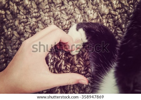 Person's hand and a cat's paw making a heart shape.  Instagram toned image - stock photo