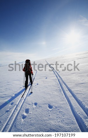 Person skiing, Lapland, Sweden - stock photo