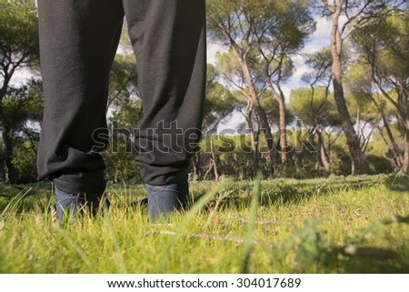 person standing in the middle of a pine forest