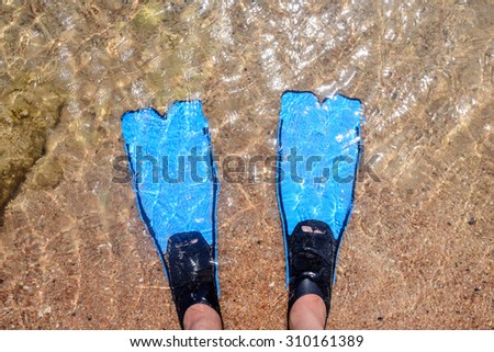 Person wearing flippers entering the sea standing in the shallow water ready to spend the day skin diving with a snorkel while on summer vacation at the seaside - stock photo