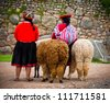 Peruvian Girls and Alpacas at Sacsayhuaman, Cusco Peru - stock photo