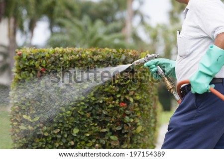 Pest control technician using high pressure spray on vegetation in apartment complex - stock photo