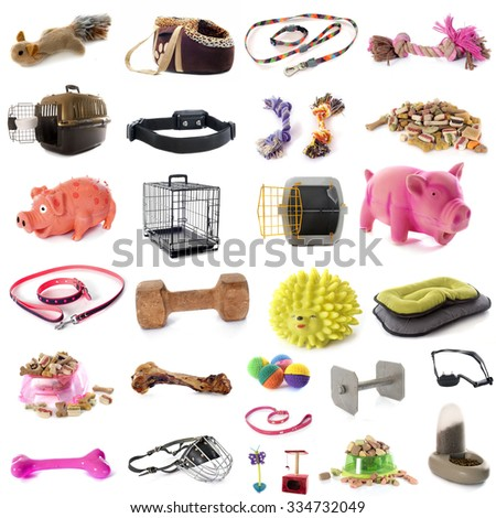 pet accessories in front of white background